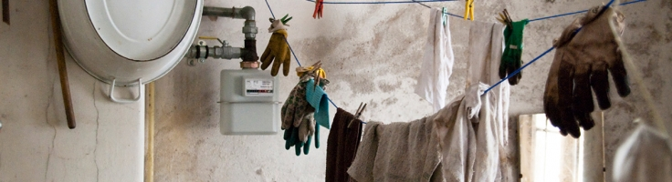 Proper Mold Remediation